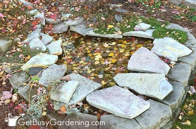 Getting ready to winterize my backyard pond