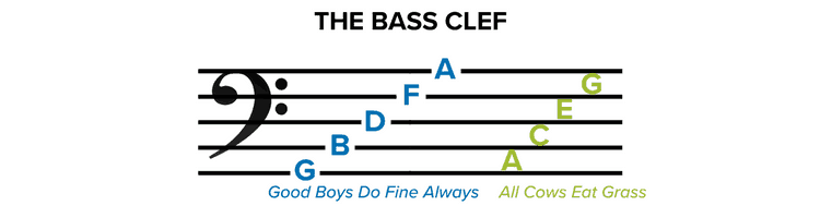 The Bass Clef